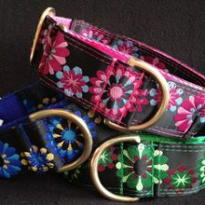 Kaleidoscope Collars - Norfolk Greyhound Rescue